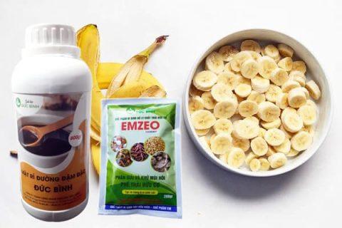 Cách làm dịch chuối bằng cách ủ với chế phẩm EMZEO cho hiệu quả tuyệt vời