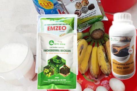 Cách làm dịch chuối bằng cách lên men ủ với chế phẩm EMZEO tạo ra được chế phẩm dịch chuối vi sinh chất lượng cao cấp