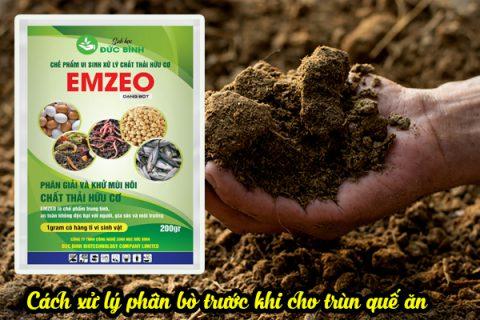 Cách ủ thức ăn cho trùn quế tiết kiệm, an toàn, hiệu quả cao
