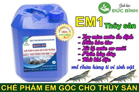 Chế phẩm EM có rất nhiều công dụng trong ao nuôi tôm, cá và thủy sản