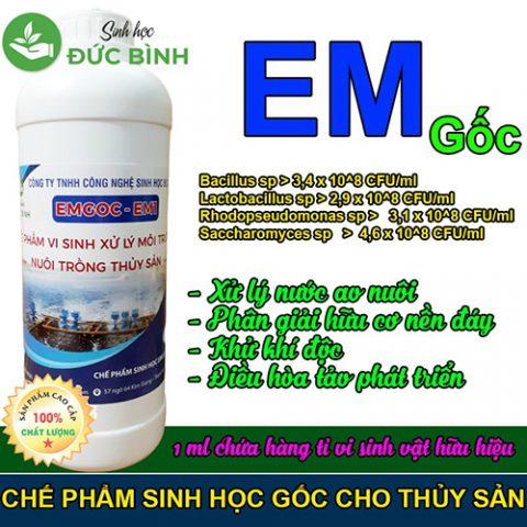 Chế phẩm EM gốc hay còn gọi là chế phẩm EM1 là dòng chế phẩm sinh học gốc tạo ra các dòng chế phẩm EM thứ cấp