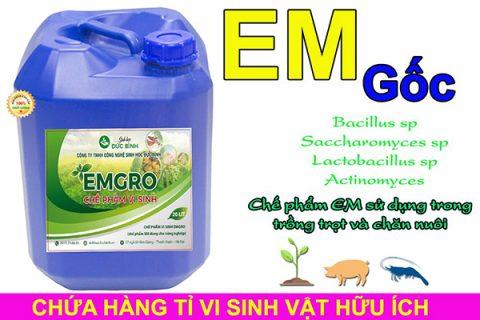 Chế phẩm EM gốc sử dụng để ủ ra chế phẩm EM5