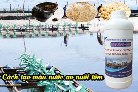 Chế phẩm sinh học EM gốc - EM1 gây màu nước ao nuôi tôm cá cực kỳ đơn giản mà hiệu quả