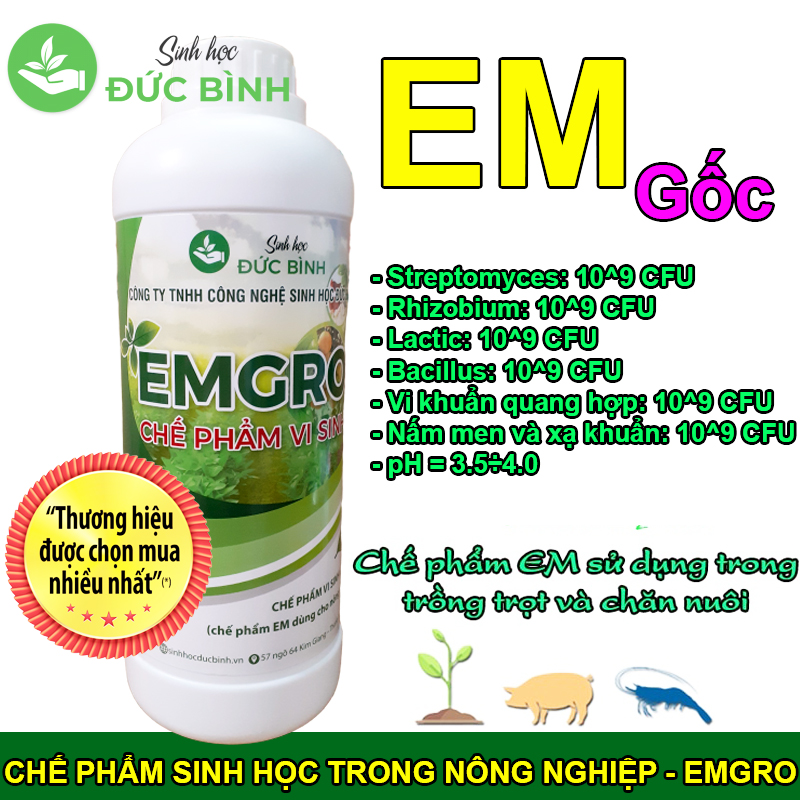 Chế phẩm sinh học EMGRO