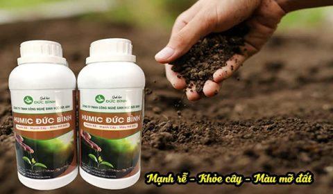 Humic Đức Bình được sử dụng ủ phân cá, đậu tương, bánh dầu, bã đậu nành, trứng chuối