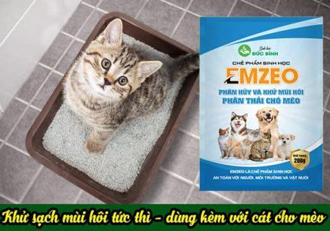 Khử mùi hôi chuồng trại chó mèo rất đơn giản với chế phẩm khử mùi hôi chó mèo Emzeo