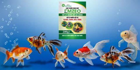 Men xử lý nước hồ cá cảnh Emzeo giúp hồ cá cảnh luôn sạch sẽ