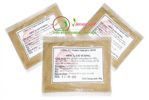 Bào tử mốc giống làm tương Aspergillus Oryzae có giá 100k/túi 50gr làm được 30 - 50kg gạo