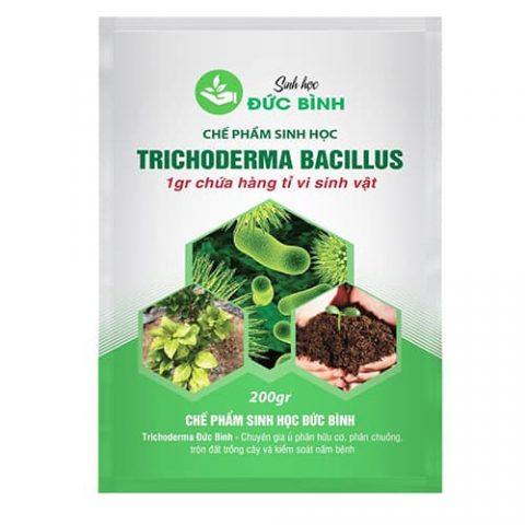 Trichoderma Bacillus giúp bà con ngăn chặn sâu bệnh phát triển