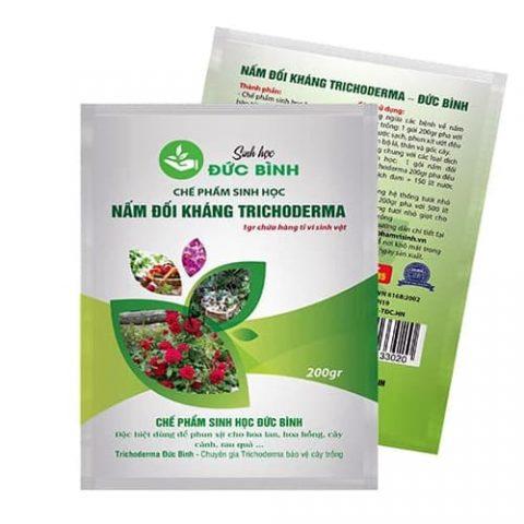 Nấm đối kháng trichoderma giúp cây trồng phòng và trị bệnh về nấm hiệu quả đồng thời bảo vệ và kích thích rễ phát triển mạnh