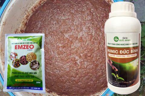 Protein, xương, lipit ... trong cơ thịt cá được men vi sinh vật sống trong chế phẩm Emzeo thủy phân nhanh chóng và hiệu quả