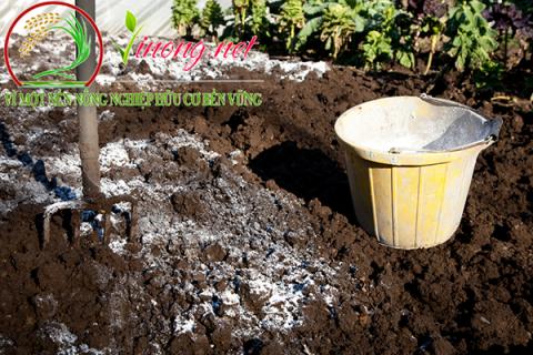 Tại sao nên bón vôi bột cho cây trồng