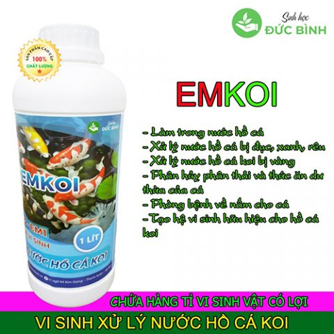 Vi sinh xử lý nước hồ cá koi EMKOI