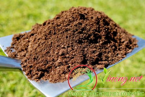 Vì sao nên ủ phân chuồng bón cho cây trồng