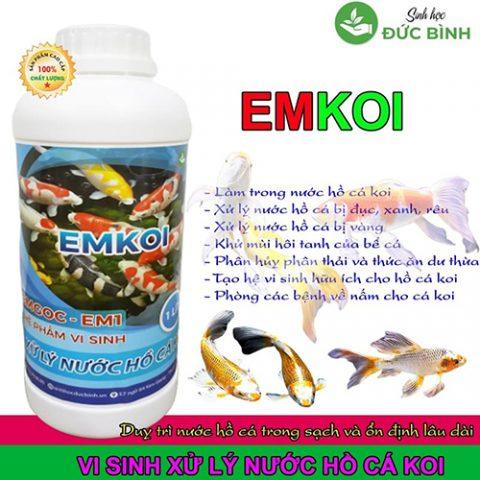 Vi sinh cho hồ cá koi EMKOI