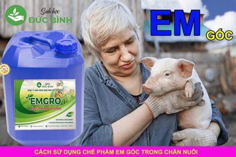 chế phẩm sinh học EM trong chăn nuôi