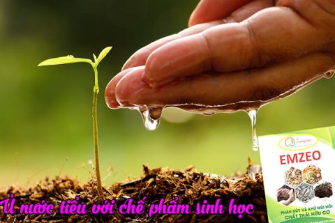 Chế phẩm EMZEO xử lý ủ nước tiểu chế biến thành phân bón cho cây trồng
