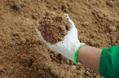 Phương pháp ủ nóng là phương pháp ủ hiện đại được áp dụng để ủ phân bón bánh dầu