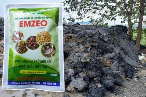 Xử lý bùn thải với chế phẩm vi sinh Emzeo