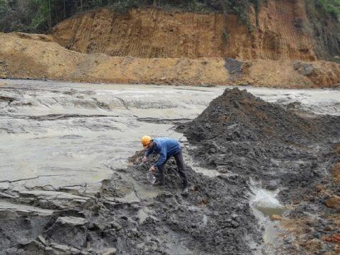 Bùn thải có nhiều loại
